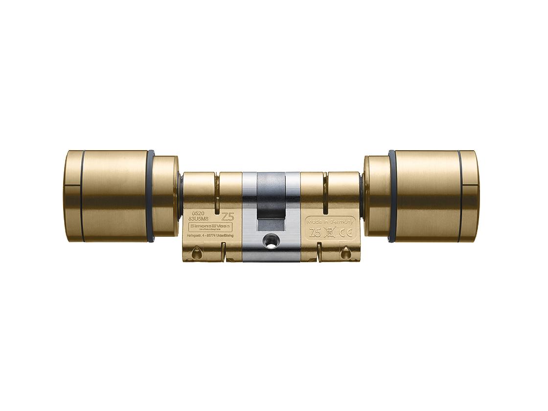 System 3060 | Digital Cylinder AX | Doppelknauf AX Freidrehend - Europrofil - Messing
